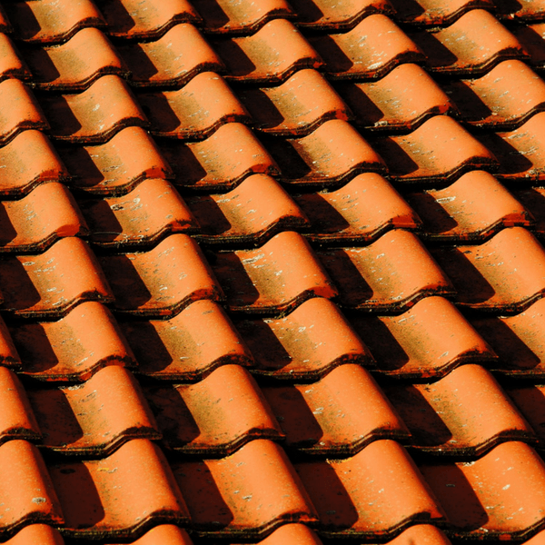 Shingles on a roof can fly off during a hurricane, potentially damaging windows.